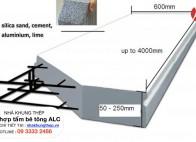 Nhà khung thép kết hợp tấm bê tông ALC ( Công nghệ Nhật Bản )